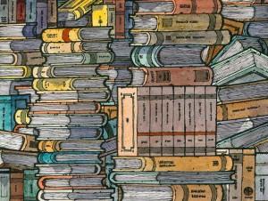 Books (Miguel Herranz)