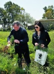 Un sindaco (donna) che resiste  al far west Calabria