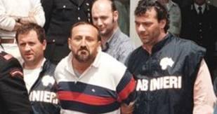 arresto polverino