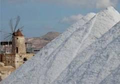 Marsala: una colata di cemento nella riserva naturale