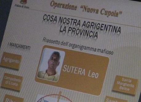 leosutera-4fe9e1355332a